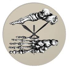bones clock
